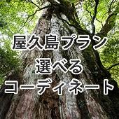 屋久島セット 選べるコーディネート(メンズ)