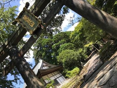 英彦山神宮 鳥居前景の写真