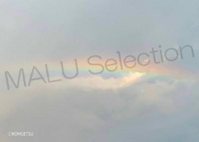 虹の龍 奇跡の一枚写真印刷