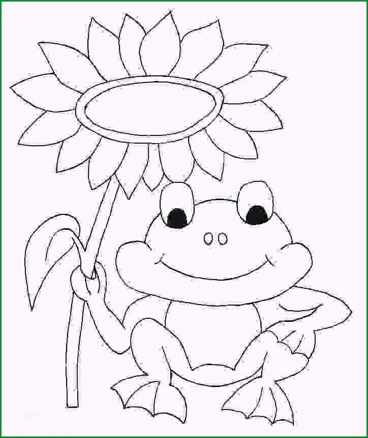 Frosch Einfach Zeichnen