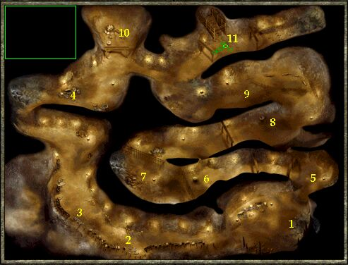 Icewind Dale 2 Online Solution Chapter 1  Goblin Warrens