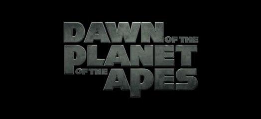 dawn-banner