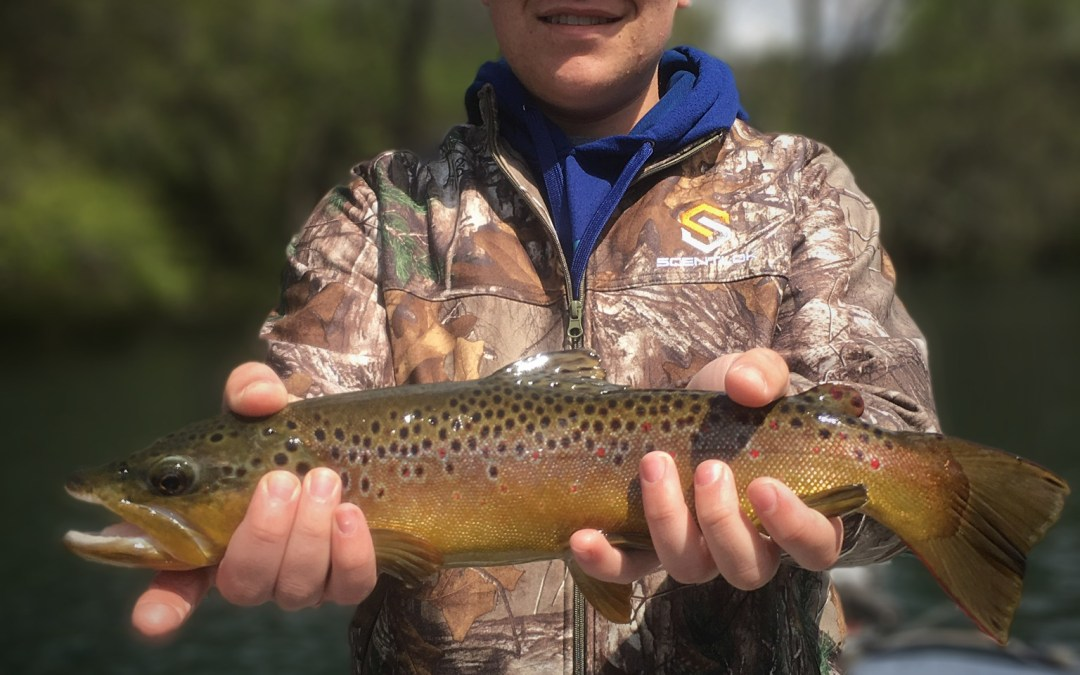 4.5.17 Fishing Report