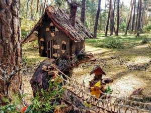 bosque magico fuente del pino