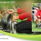 CAC-Esztergom-H Exposiciones