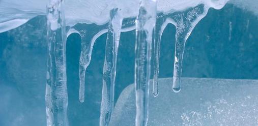 freddo(1)
