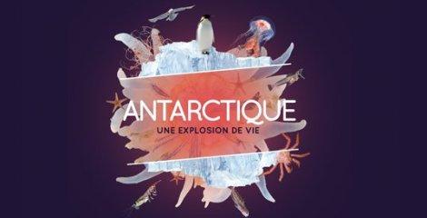 Museum-histoire-naturelle-antarctique