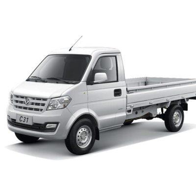 camion ligero