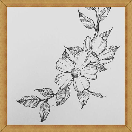 Gambar Sketsa Lukisan Bunga Cara Menggambar Bunga Sepatu 5