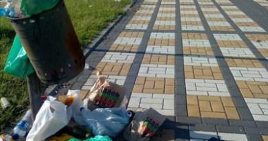 talavera-basura-suciedad-civismo-linea-verde-limpieza-ciudadania