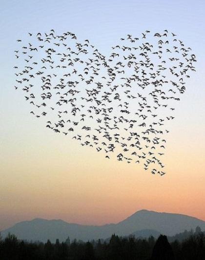 Με την αγάπη μου προς το Θεό και τον πλησίον, ανήκω στους ουρανούς