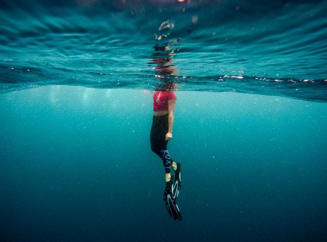 diving fins