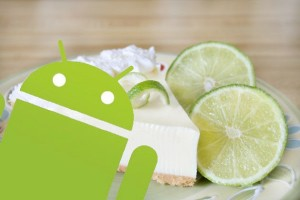 Android-Key-Lime-Pie_034