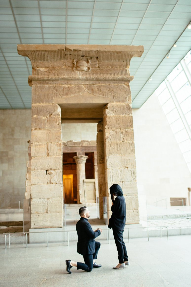 Temple of Dendur Proposal