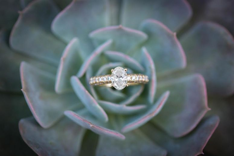 Engagement Ring in Succulent | So This Is Love Wedding Blog