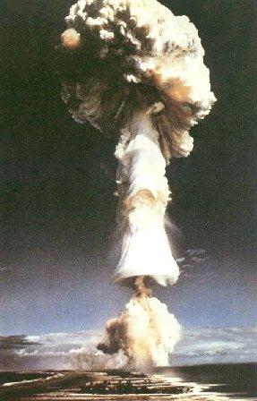 https://i0.wp.com/www.sott.net/image/image/10492/mushroom.jpg