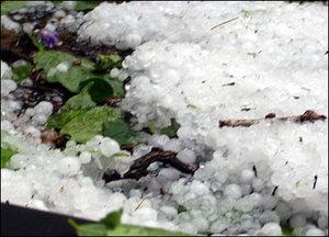 London hail 2