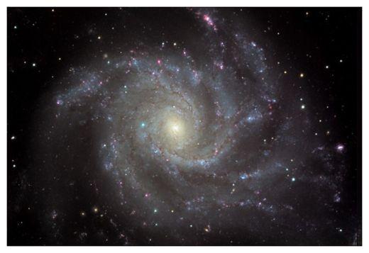Messier 101 Supernova