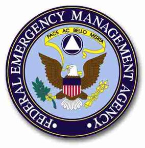 FEMA badge