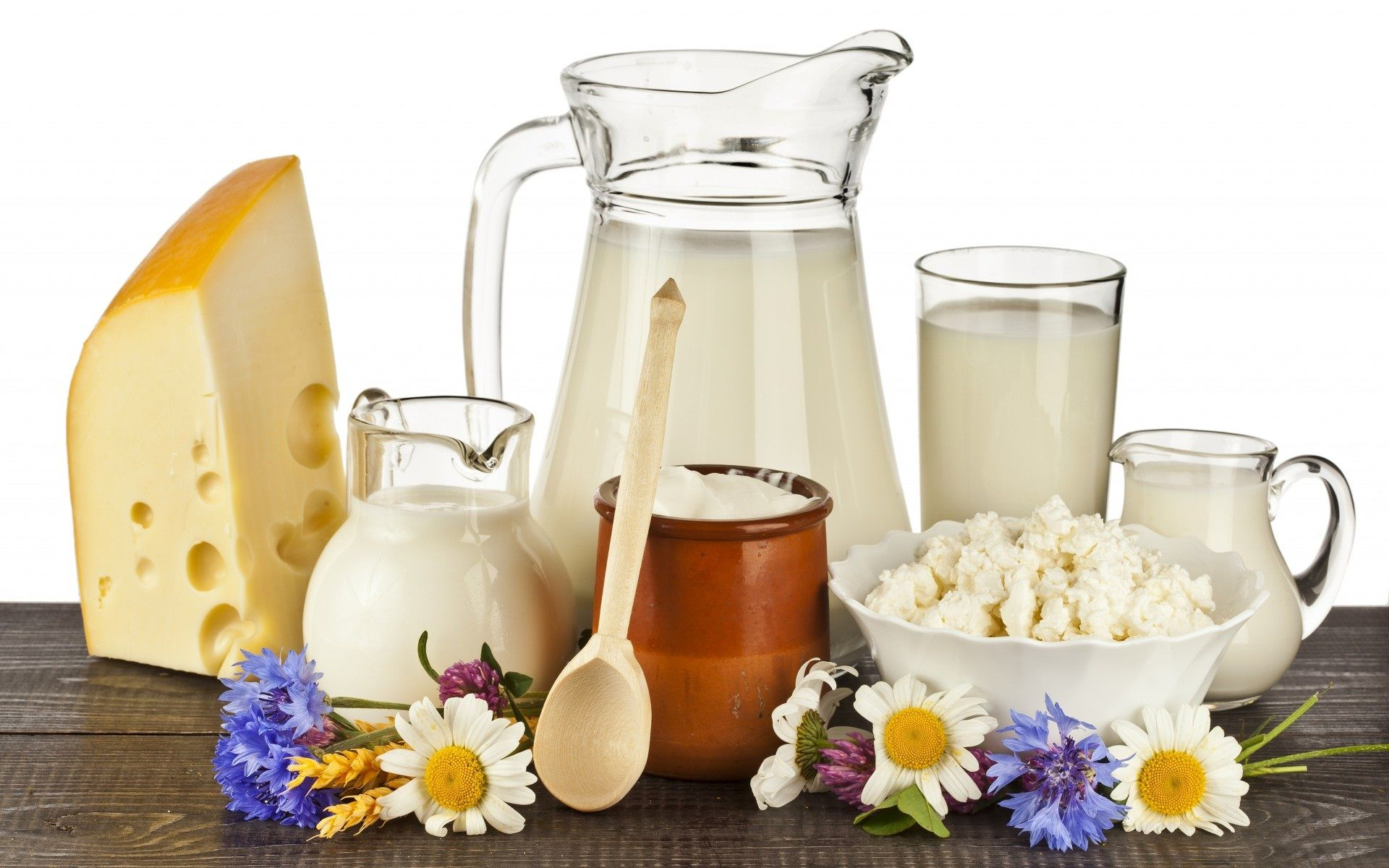 Image result for dairy products