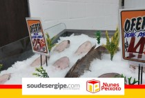 soudesergipe_nunespeixoto (6)