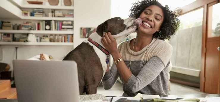Como Criar Home Office Inteligente e Lucrativo