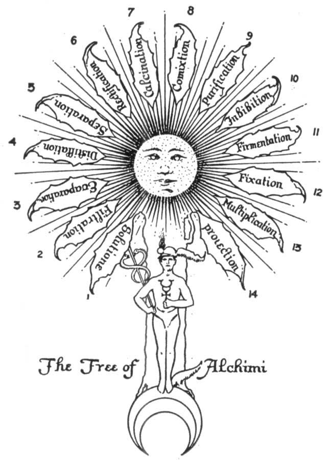 The Twelve Operations in the Alchemical Great Work.