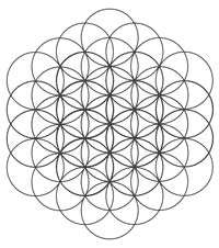 The Tree of Life and the Flower of Life