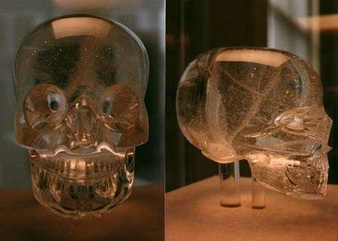 British Museum of Mankind skull