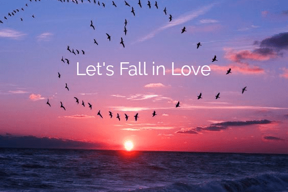 FULL MOON FEBRUARY 9TH – Let's Fall in Love
