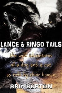 Lance & Ringo Tails book cover