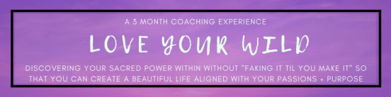Love Your Wild: A 3 Month Coaching Experience