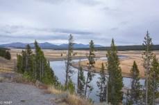Yellowstone River - ein Traum!