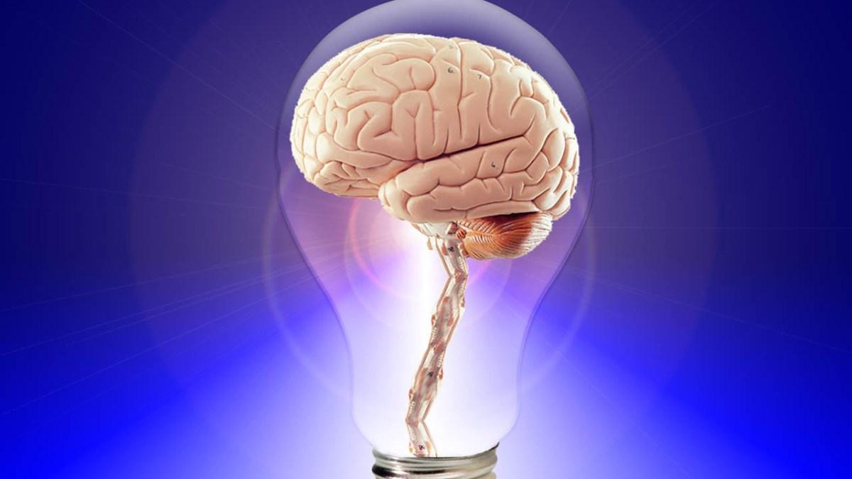 Unter Schockhypnose handeln Menschen oft unlogisch - Tina wiegand - Soulfit - pixabay - publicdomainpictures