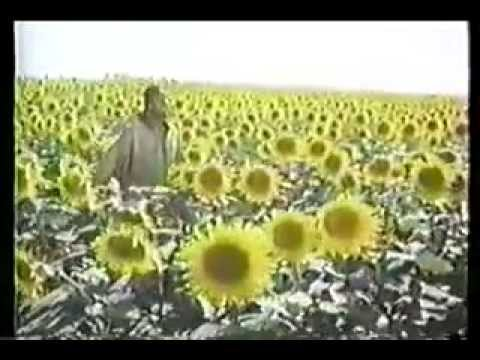 The Secret Life of Plants FULL DOCUMENTARY MOVIE + BOOK Soundtrack by Stevie Wonder