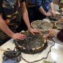 The Hazelnut Circle Drum Birthing Day