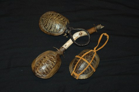 Turtle Shell Rattles