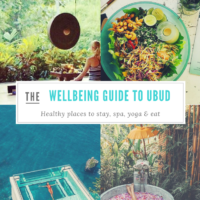 ubud wellbeing guide