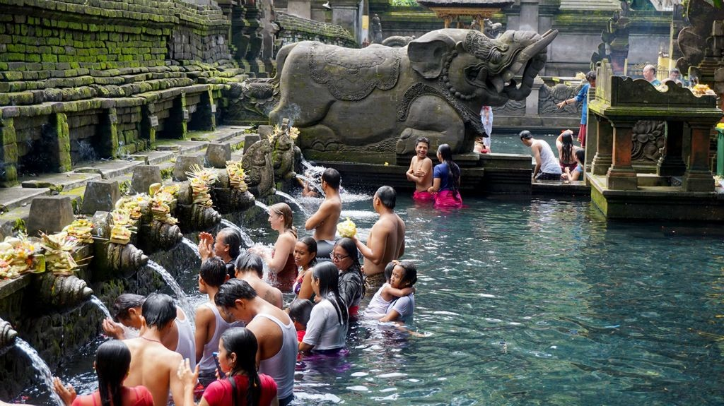Bali Breezed