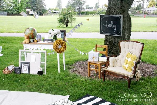 chá de bebê para iniciantes picnic