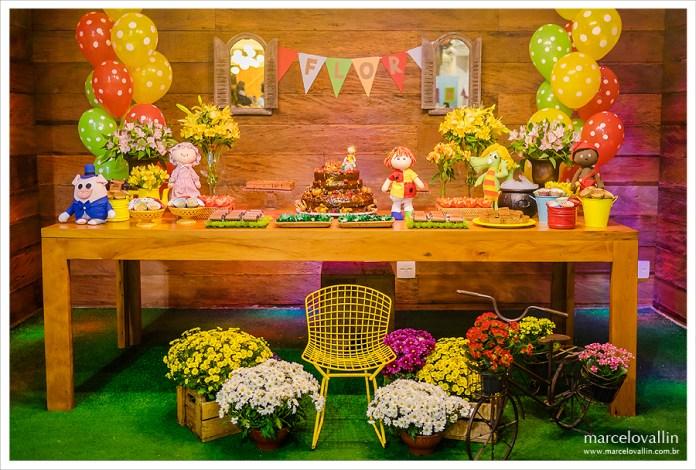 festa-infantil-sitio-do-pica-pau-amarelo