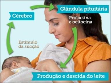 Breast-Feeding-BR