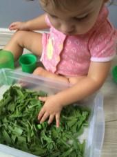atividades-infantis-caixa-sensorial-grama