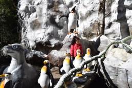 viagem-com-criancas-parque-florybal