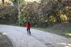 viagem-com-criancas-serra-gaucha-lago-negro