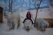 gramado-e-canela-snowlad