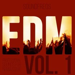EDM Vol 1 NI Massive Presets