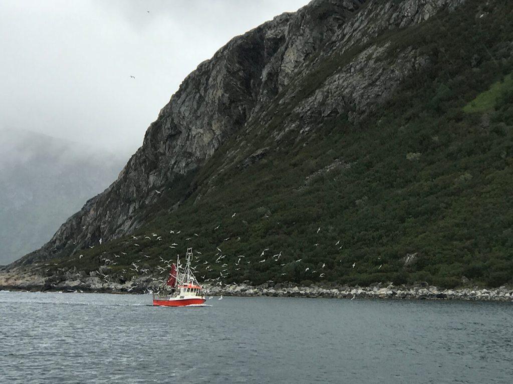 Fishing boat on the horizon