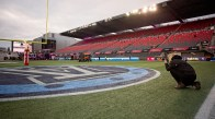 Our own Els Doiron capturing a shot of the Grey Cup field...photo by Renee Doiron