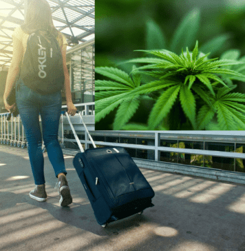 cannabis travel transactions